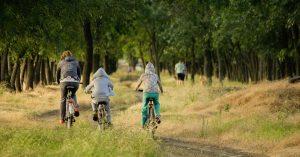 Kangaroos Gully bike path